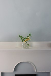 honeysuckle, mantel