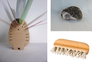 hedgehogs and brushes