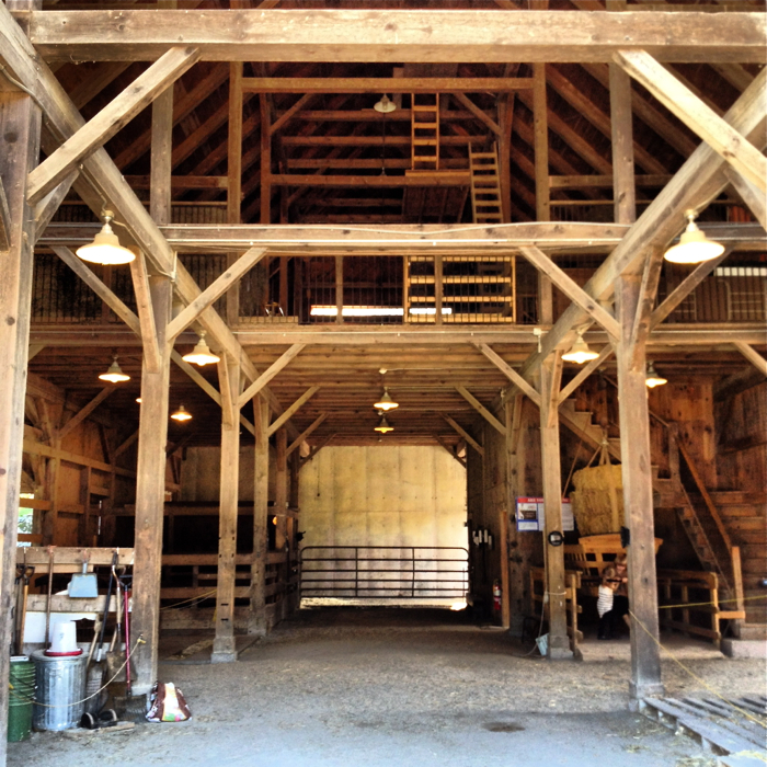Farm Barn drumlin farm – barn