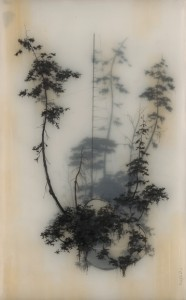 25_heldup brooks salzwedel