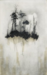 65_reflection brooks salzwedel