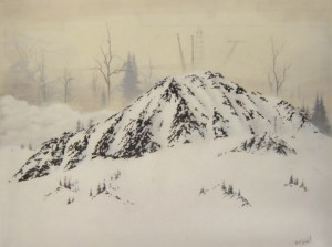 82_littlebigmountainmed brooks salzwedel