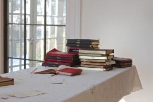 sunlit journals