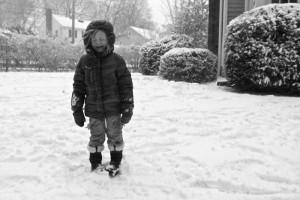 solvi in snow