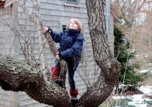 pause for a tree climb
