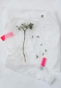 Margo Maria Weijer plastic nature