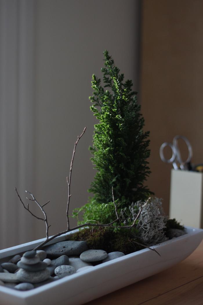 sunlight desktop zen garden