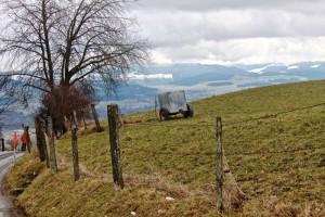 Bern field 2