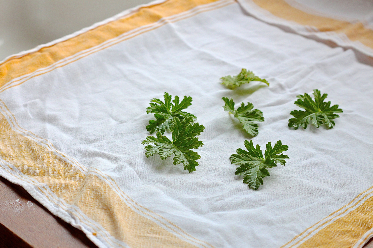 washed-leaves-rose-geranium-lemon-cake-Justine-Hand-Gardenista