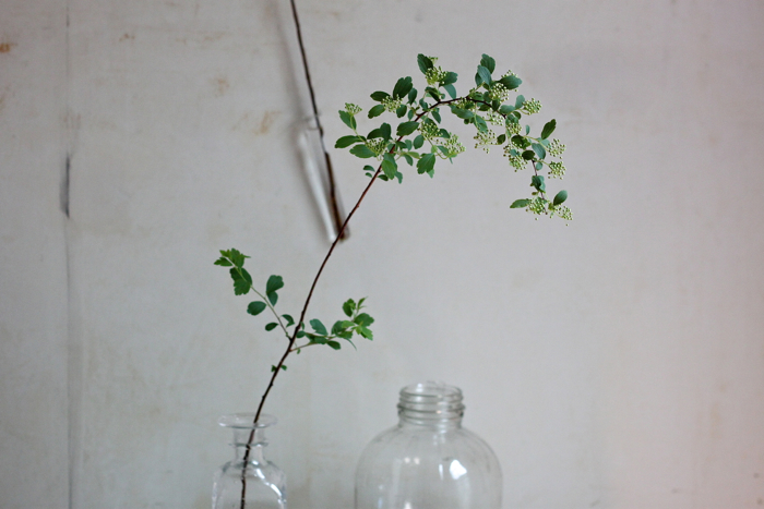 bridal wreath and bottles