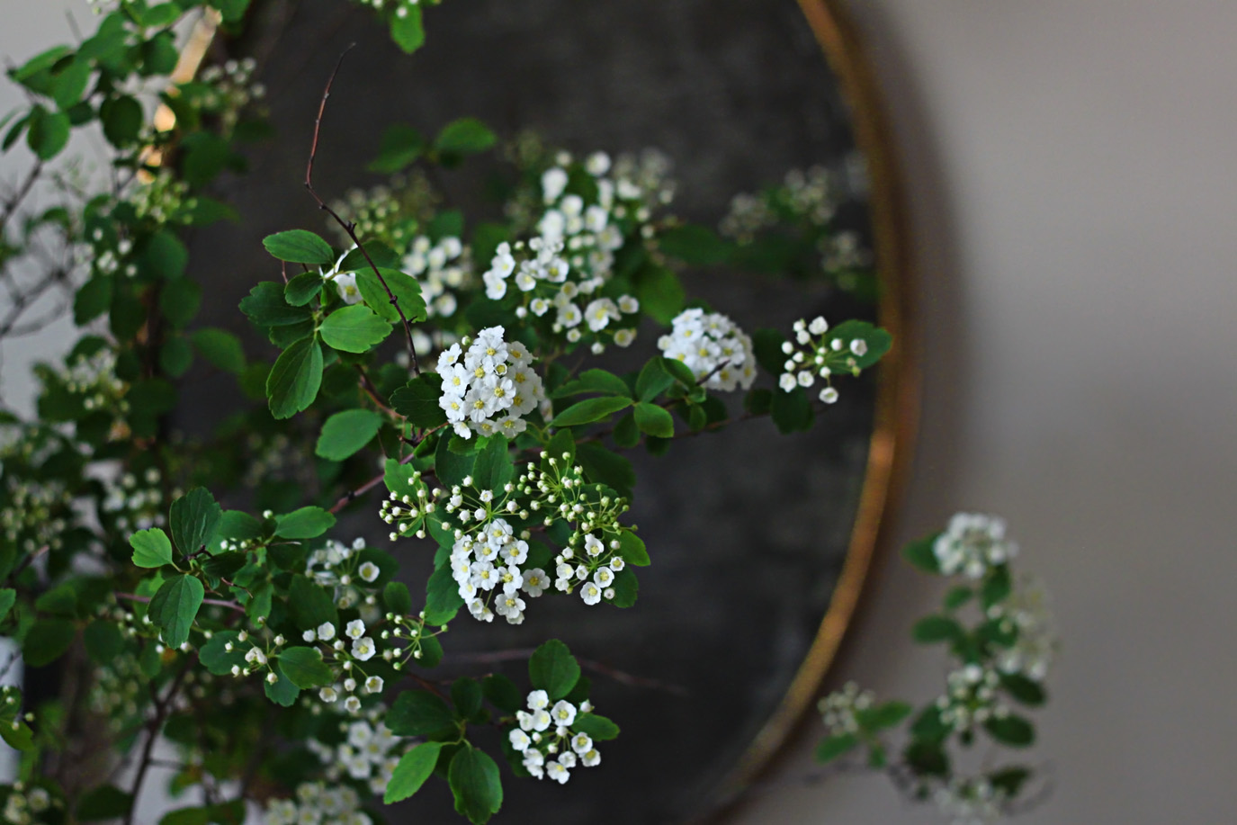 bridal wreath and mirror