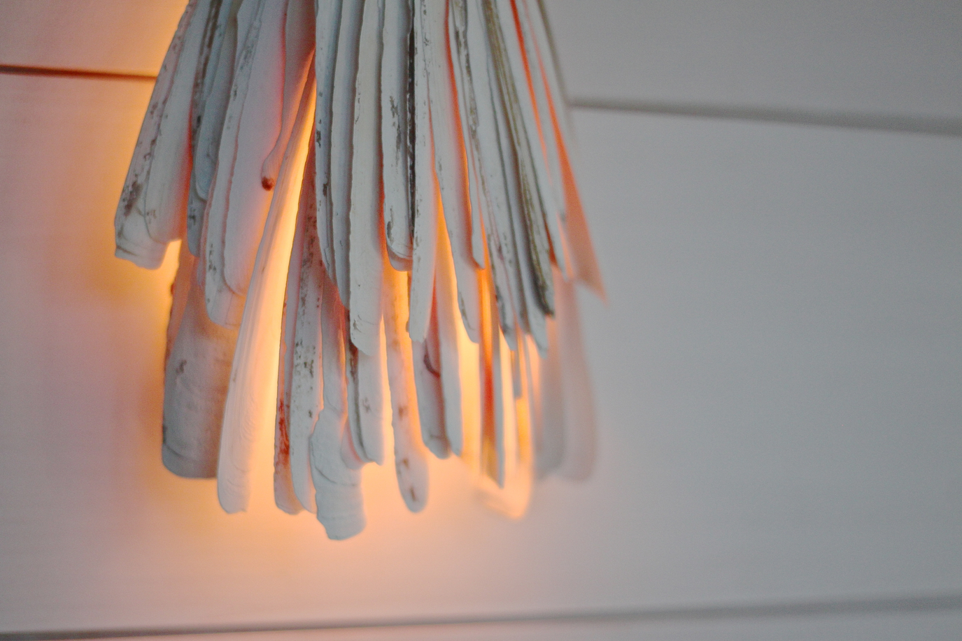 razor clam lamp sade detail by Justine Hand