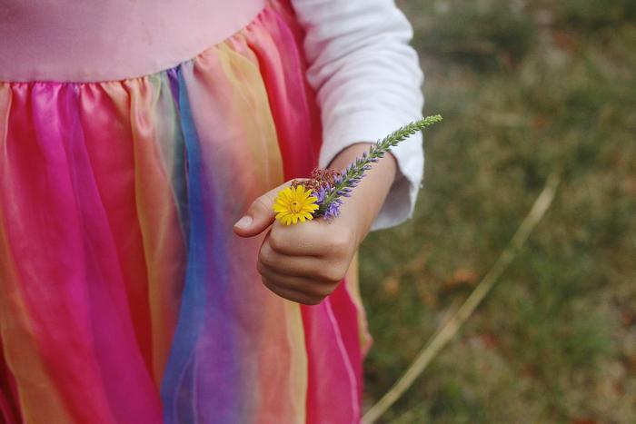 Fairy posie