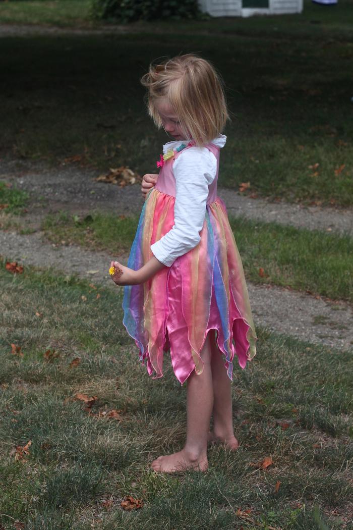 Solvi fairy 1