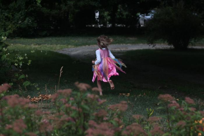 bye Solvi Fairy