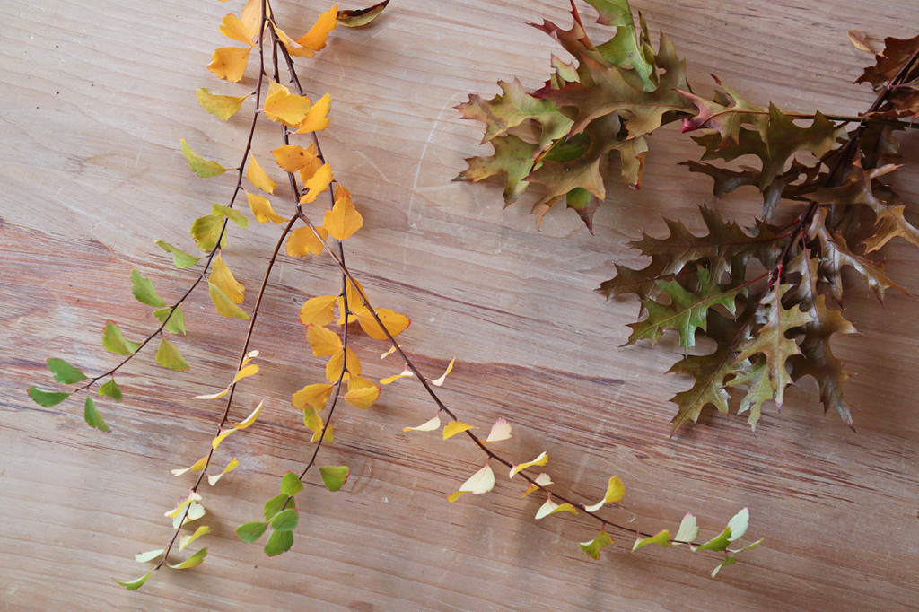 DIY Cotton Garland, oak and bridal wreath branches, by Justine Hand for Gardenista