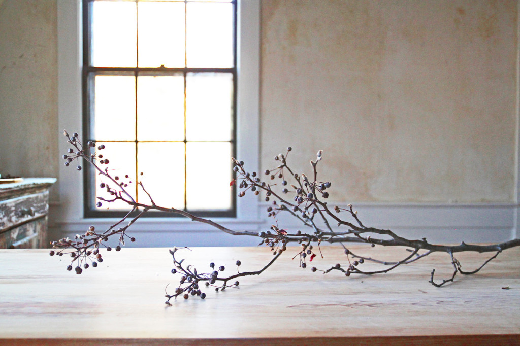 DIY Cotton Garland, pear branch, by Justine Hand for Gardenista