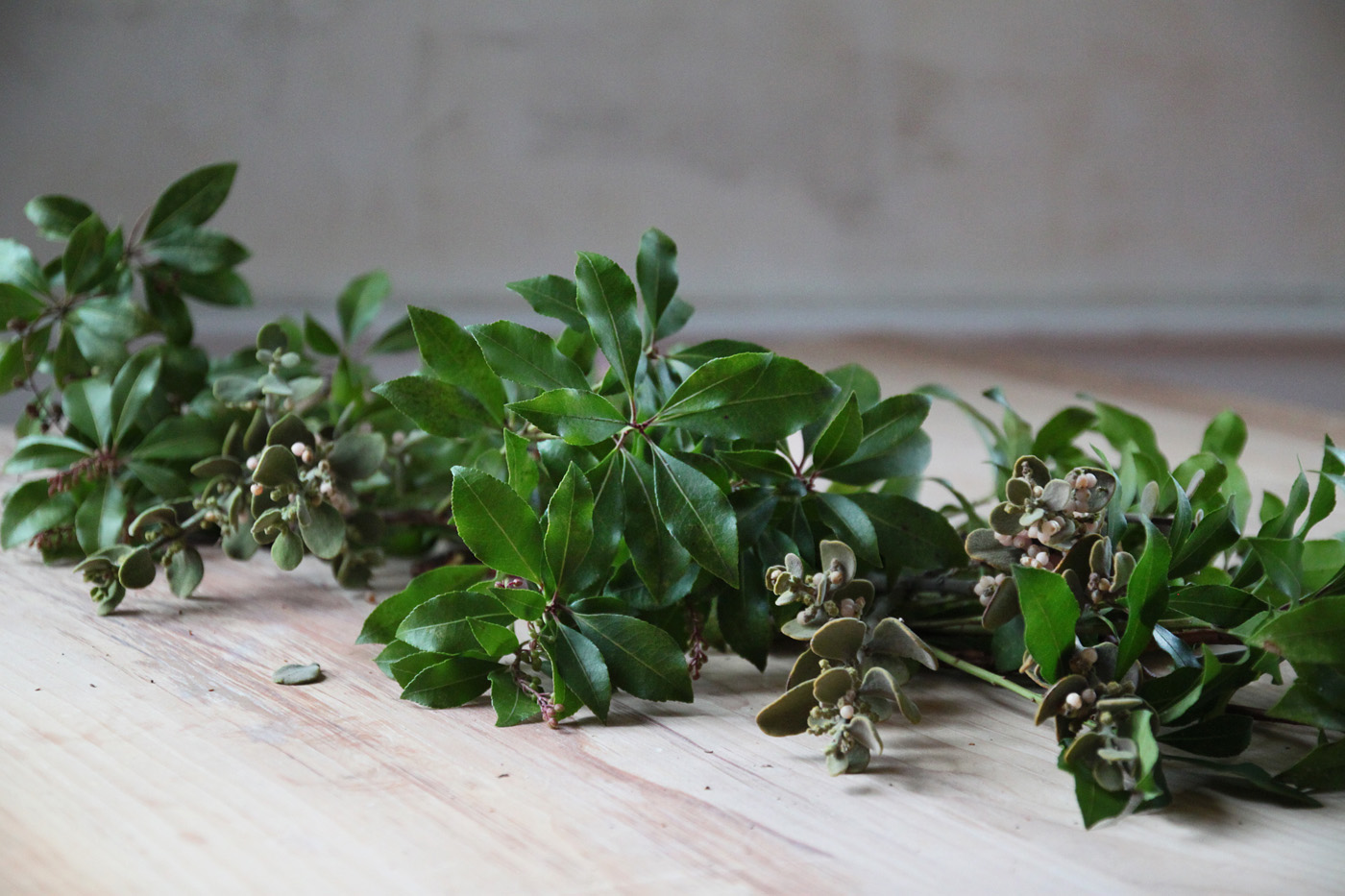 mistletoe and meyer lemon garland, adding in mistletoe, by Justine Hand for Remodelista