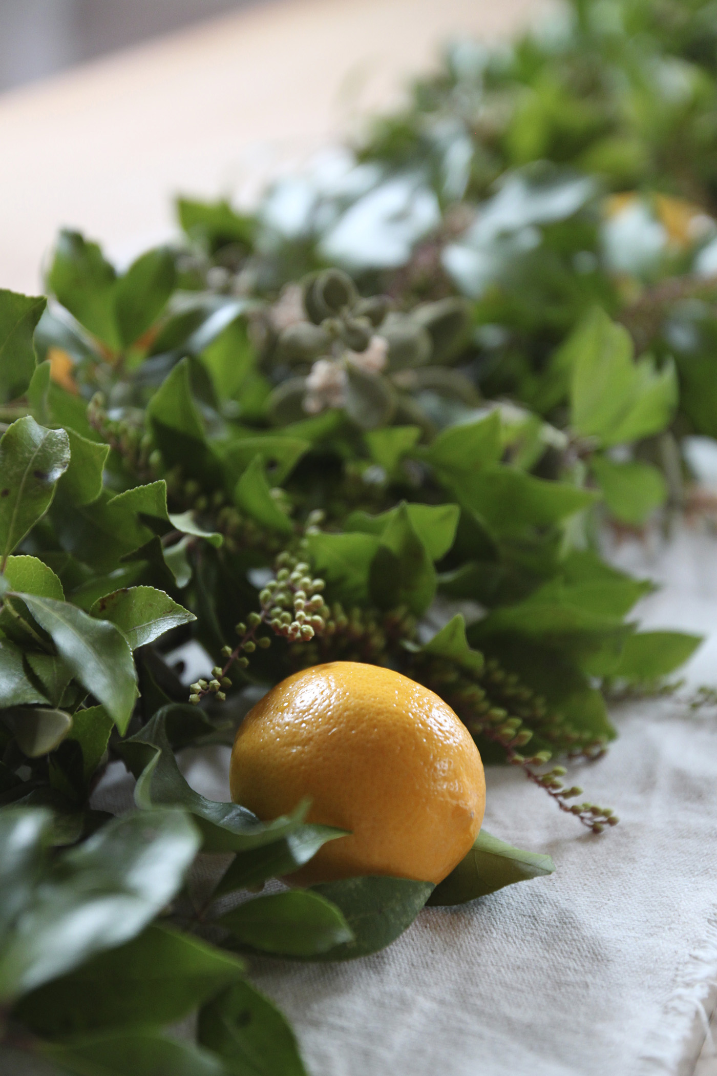 mistletoe and meyer lemon garland, finished detail, by Justine Hand for Remodelista