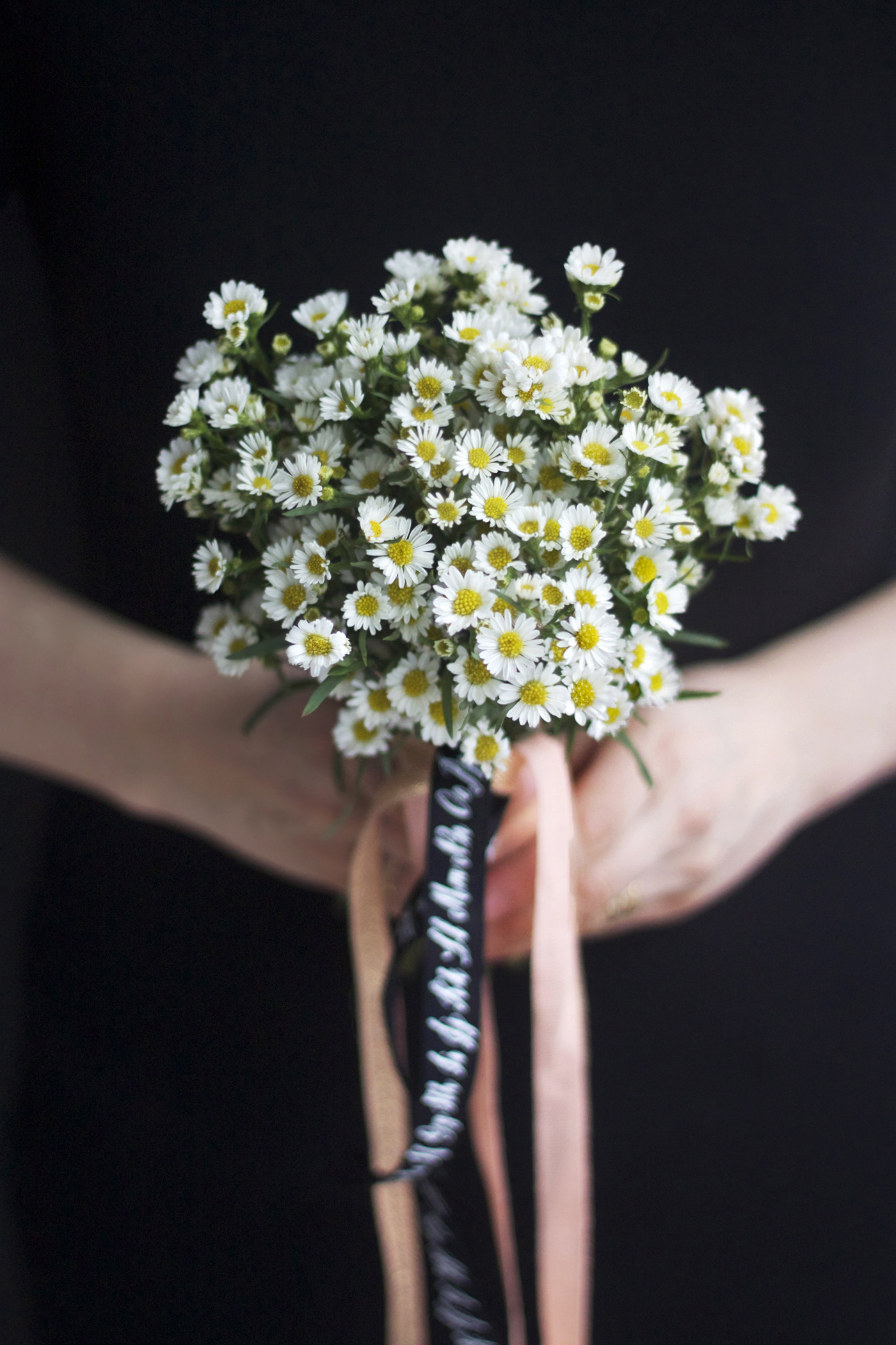 White Aster Posy with Studio Carta Ribbon, finished, by Justine Hand_edited-1